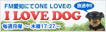 FM愛知にてONE LOVEのI LOVE DOG